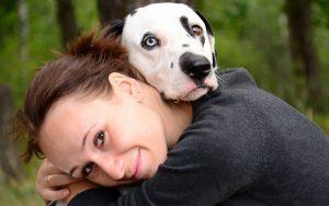 Пропала собака или кошка - поможет астрология - бесплатная консультация астролога
